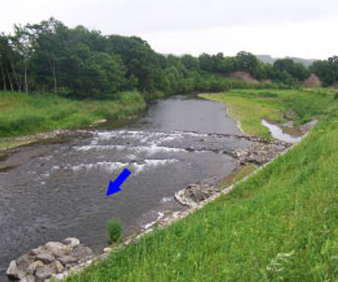 河川構造物(近自然工法)の設計